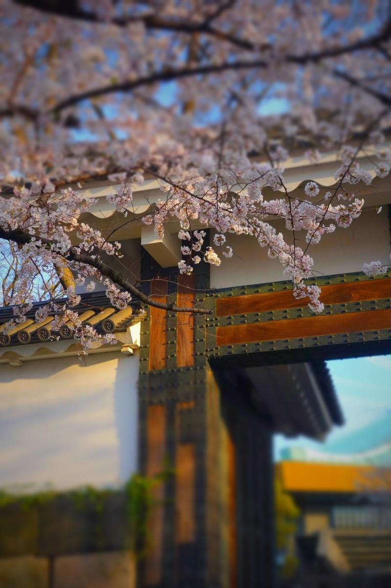 f:id:arashi_golf:20210328143611j:plain