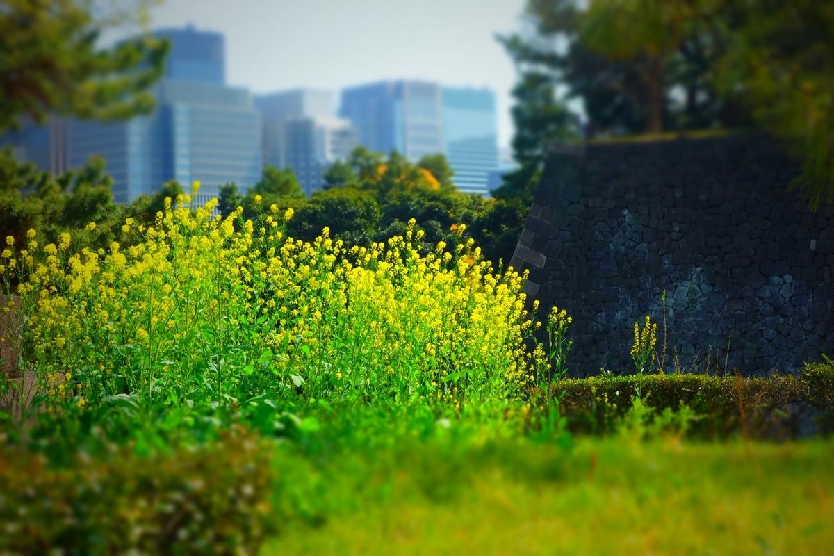 f:id:arashi_golf:20210329221430j:plain