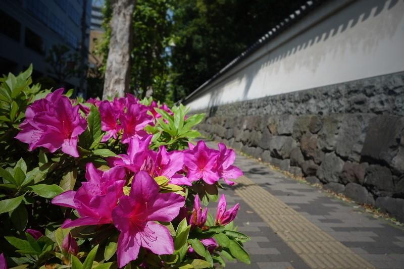 f:id:arashi_golf:20210411221612j:plain