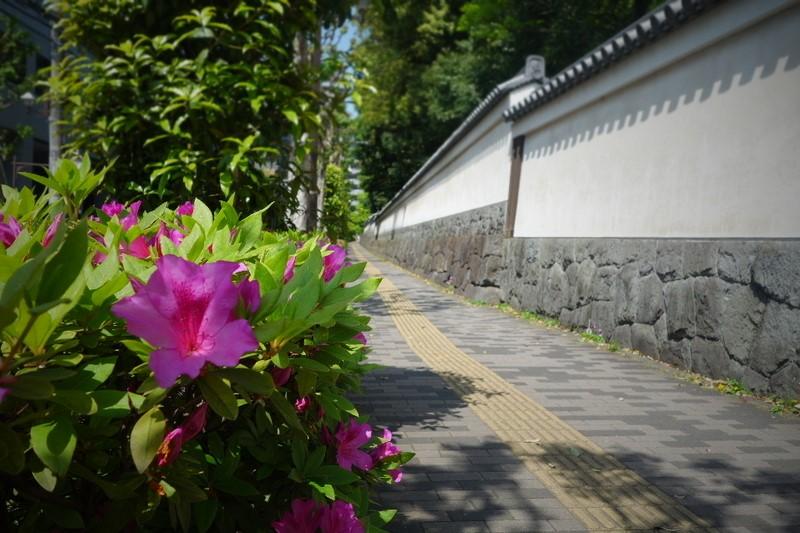 f:id:arashi_golf:20210411222318j:plain