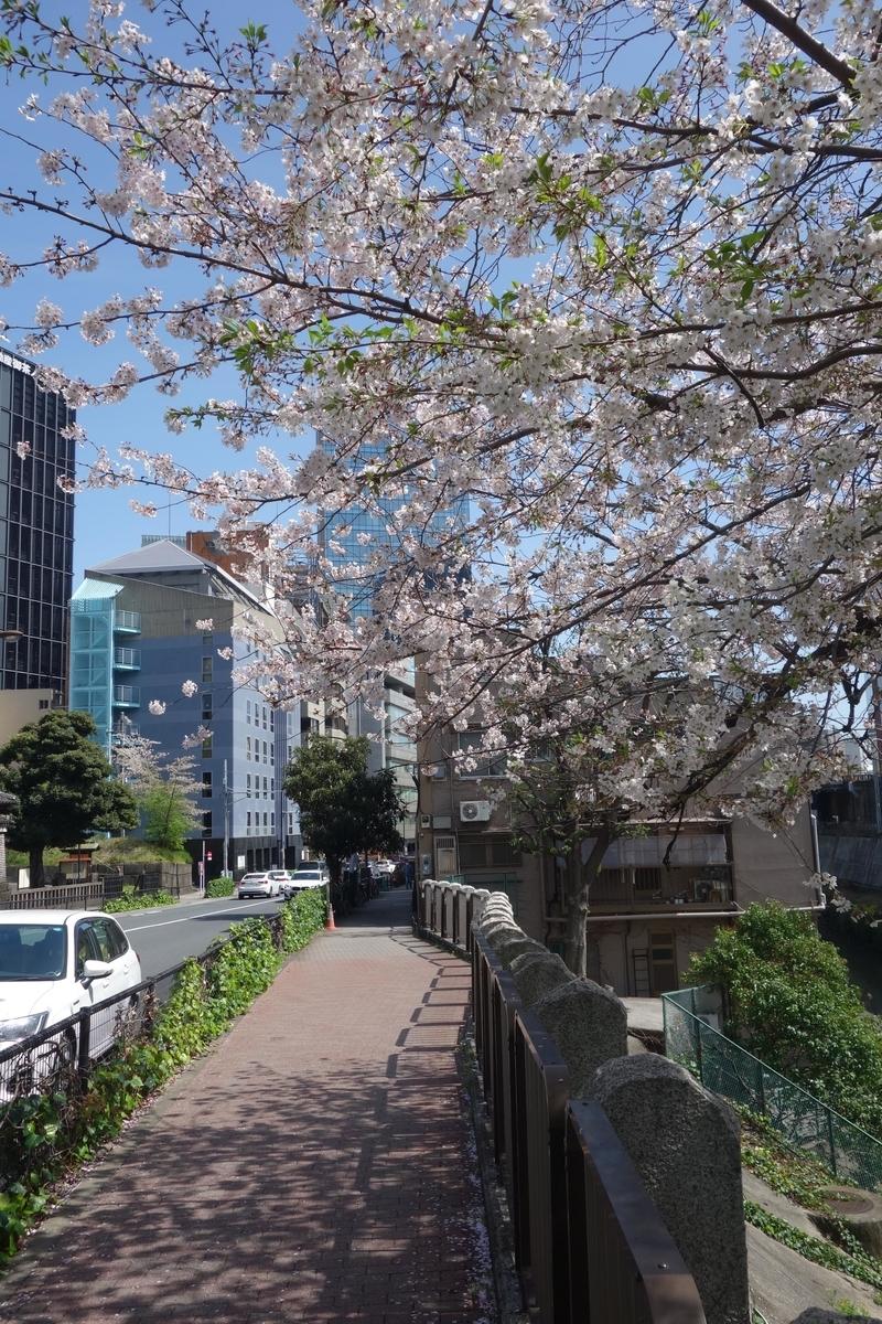 f:id:arashi_golf:20210413203429j:plain
