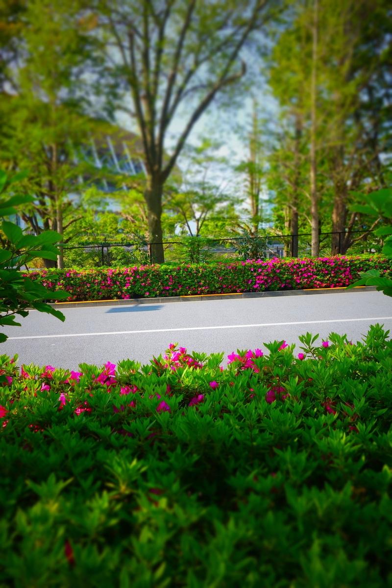 f:id:arashi_golf:20210420202336j:plain