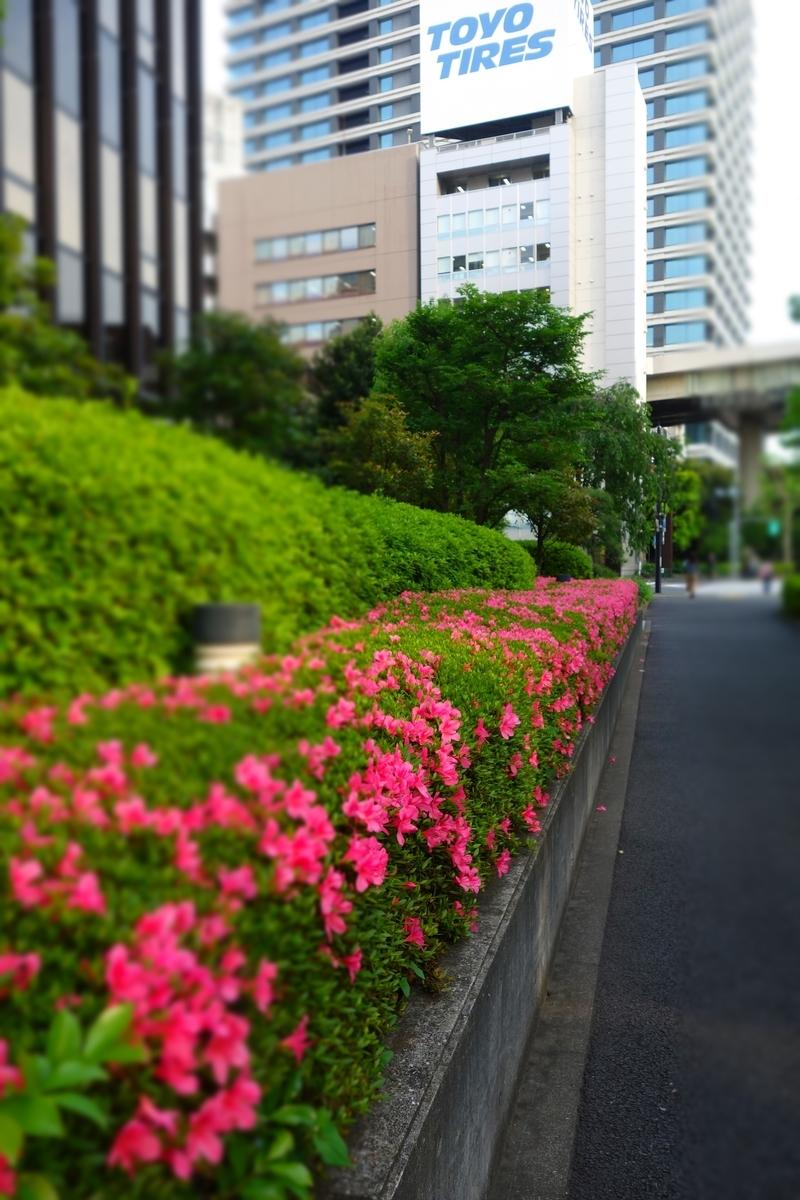 f:id:arashi_golf:20210522194107j:plain