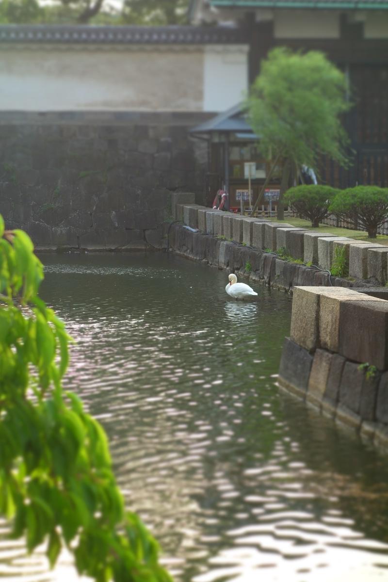 f:id:arashi_golf:20210523214306j:plain