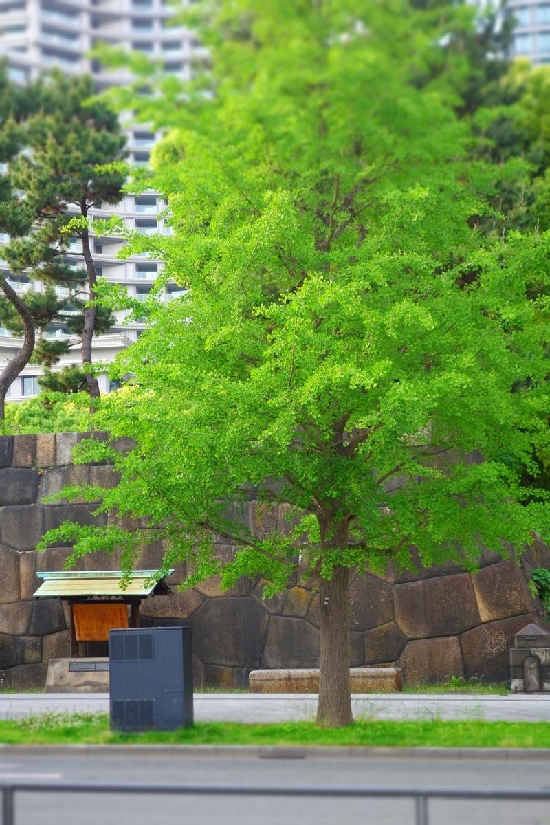 f:id:arashi_golf:20210524194149j:plain