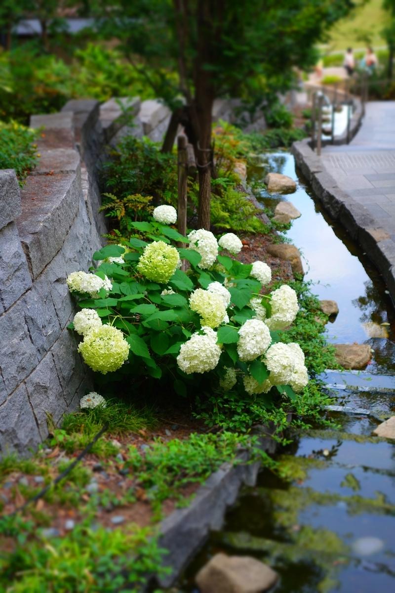 f:id:arashi_golf:20210613214028j:plain