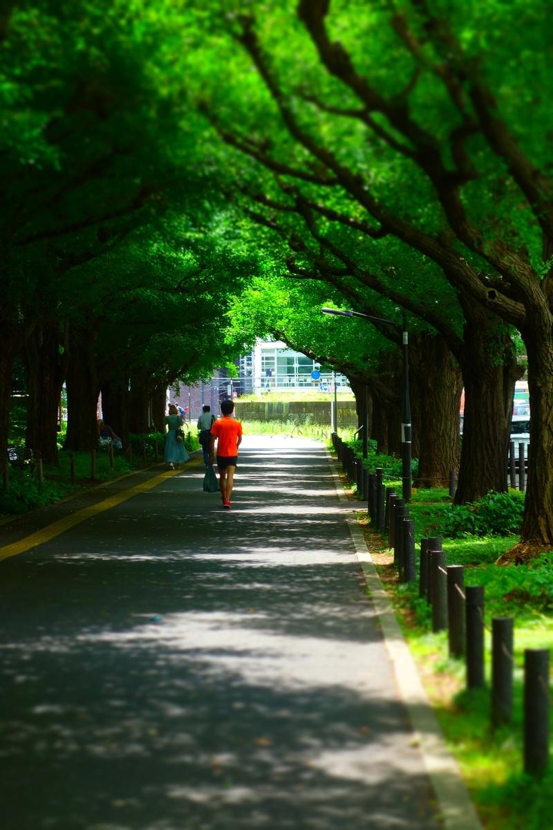 f:id:arashi_golf:20210624214201j:plain