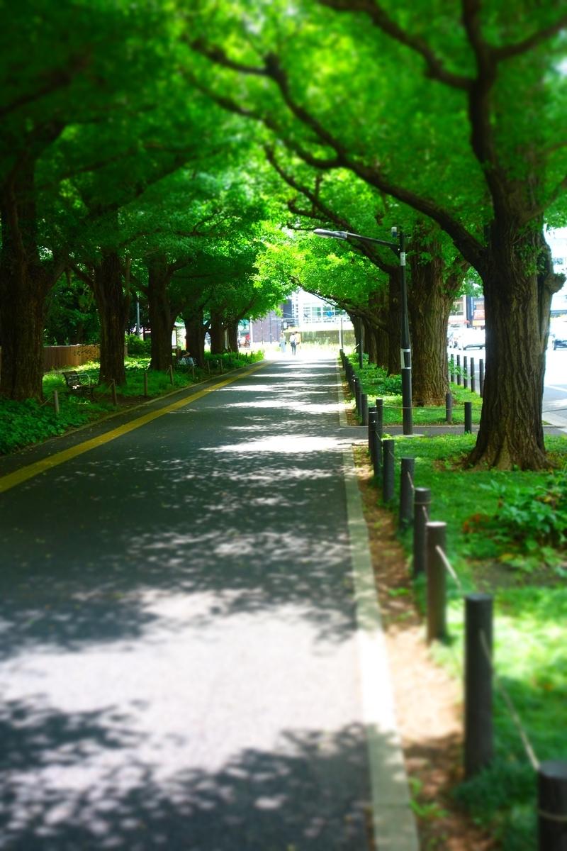 f:id:arashi_golf:20210624214255j:plain