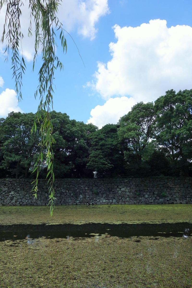 f:id:arashi_golf:20210731232636j:plain