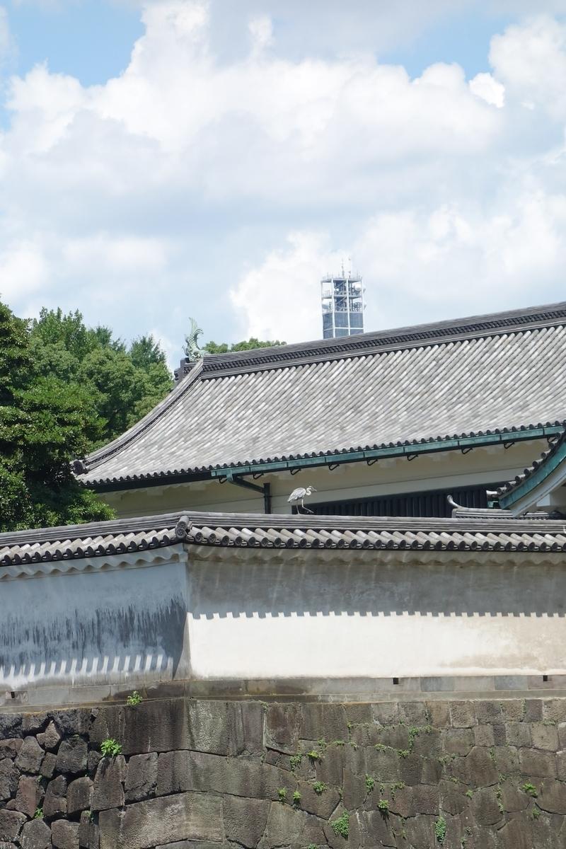f:id:arashi_golf:20210801202235j:plain