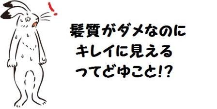 f:id:arasukkiri:20180525013810j:plain