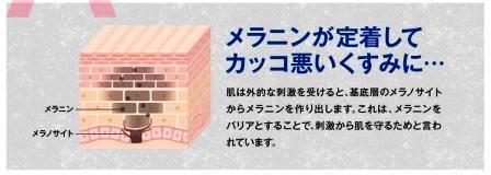f:id:arasukkiri:20180529035127j:plain