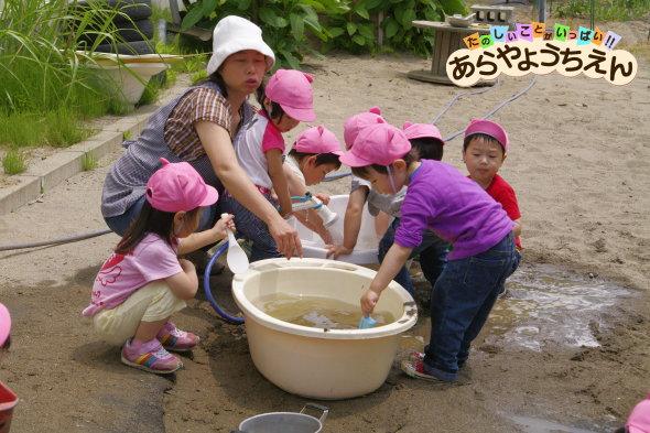 園庭で水遊び(秋田県秋田市の楽しい幼稚園 新屋幼稚園)