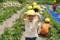 イチゴ摘み(秋田県秋田市の楽しい幼稚園 新屋幼稚園)食育