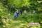 清太郎さんの森へ(秋田県秋田市の楽しい幼稚園 新屋幼稚園)