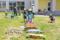 ハードルに挑戦!(秋田県秋田市の楽しい幼稚園 新屋幼稚園)