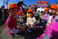 ヒマワリの種収穫(秋田県秋田市の楽しい幼稚園 新屋幼稚園)