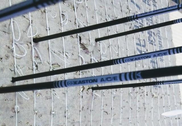 f:id:archery2017:20170731002816j:image