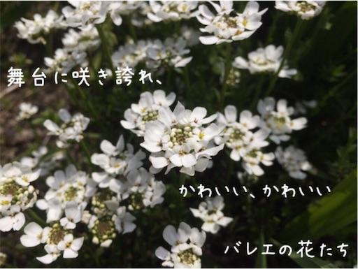 f:id:arigatai3939:20180403122029j:image
