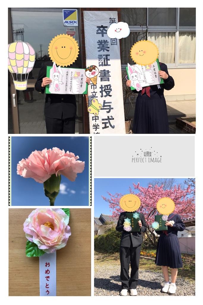 f:id:arigatai3939:20190307154453j:image