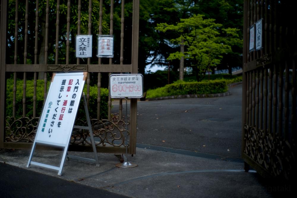 f:id:arigataki_shiawase:20200531184820j:plain