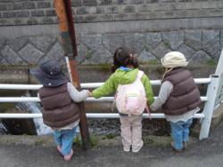 f:id:arigirisu:20110315102755j:image