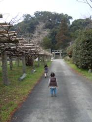 f:id:arigirisu:20110315113421j:image