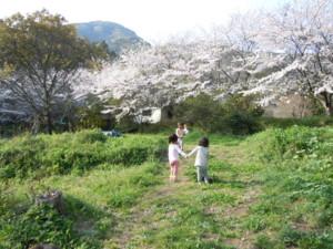 f:id:arigirisu:20110409163156j:image
