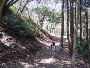 f:id:arigirisu:20110410121338j:image