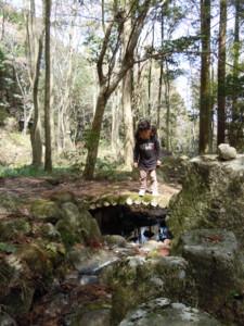 f:id:arigirisu:20110410121903j:image