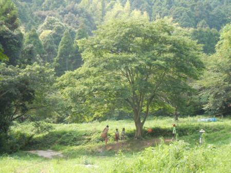 f:id:arigirisu:20110725145032j:image