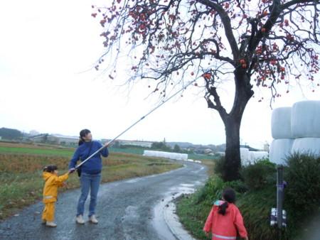 f:id:arigirisu:20121117122525j:image