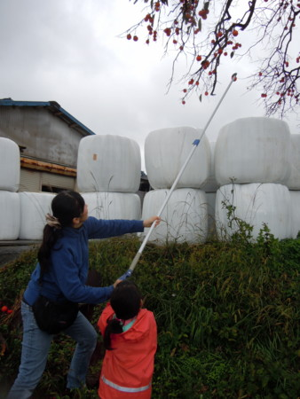 f:id:arigirisu:20121117122728j:image