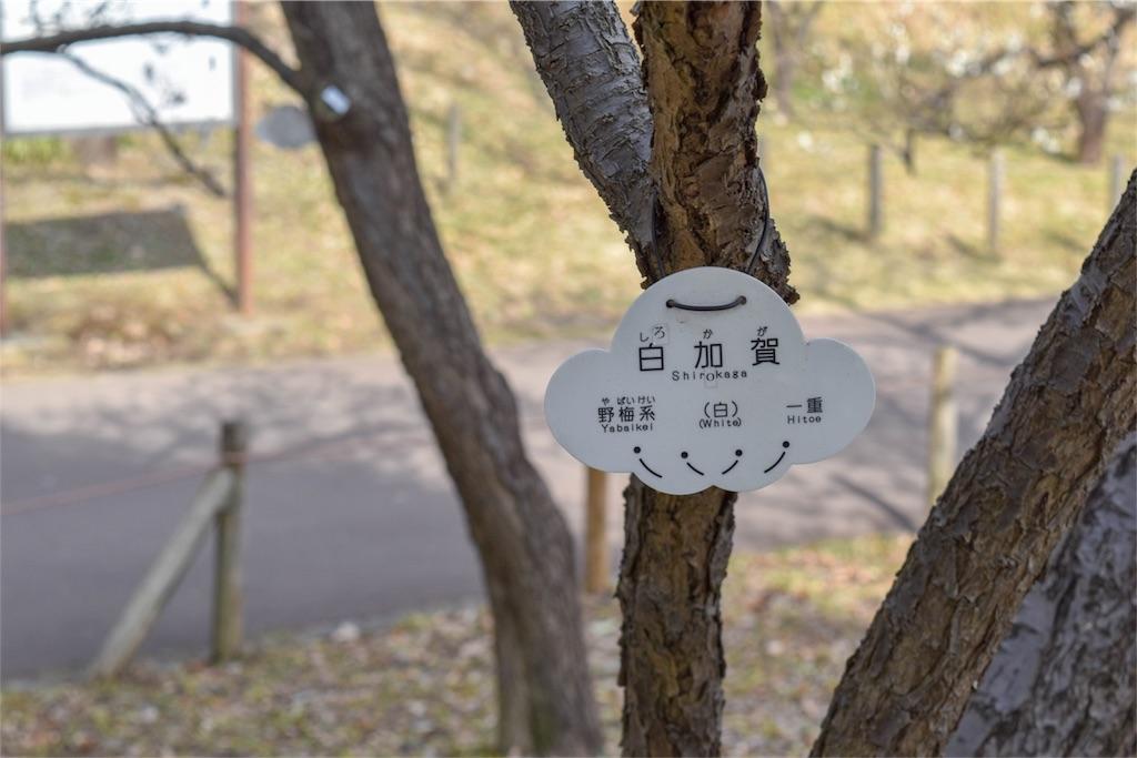 f:id:ariki_com:20180304114827j:image
