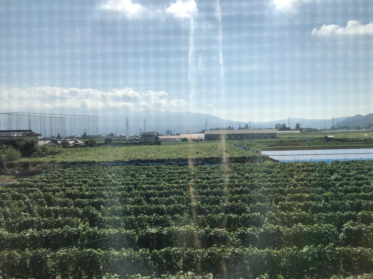 f:id:arima_jiro_takeichi:20200116122315j:plain