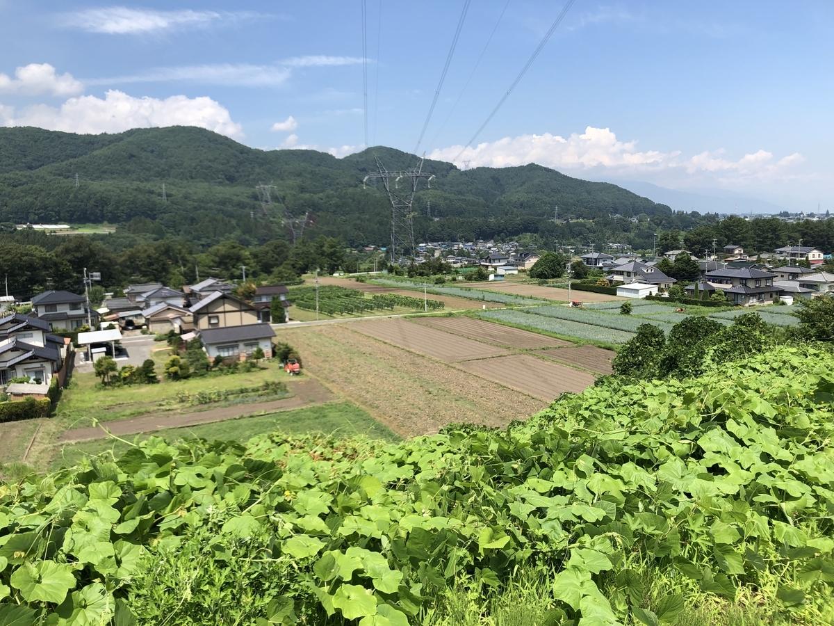 f:id:arima_jiro_takeichi:20200203000405j:plain