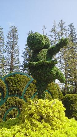 東京ディズニーランドホテルお庭植木