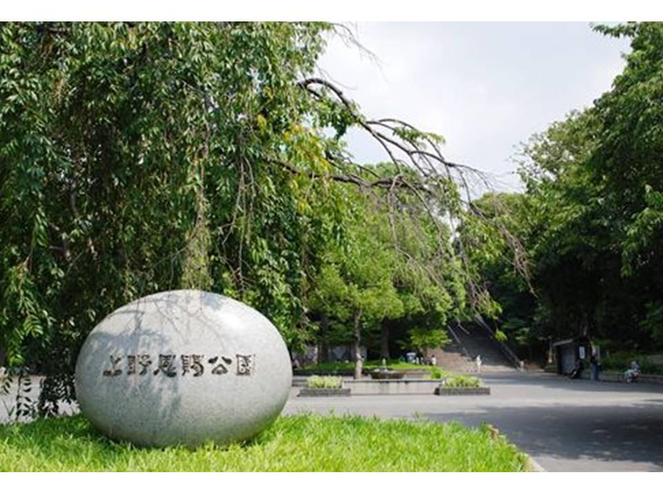 f:id:arimurasaji:20170109151514j:plain