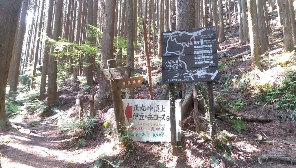f:id:arimurasaji:20170505213350j:plain