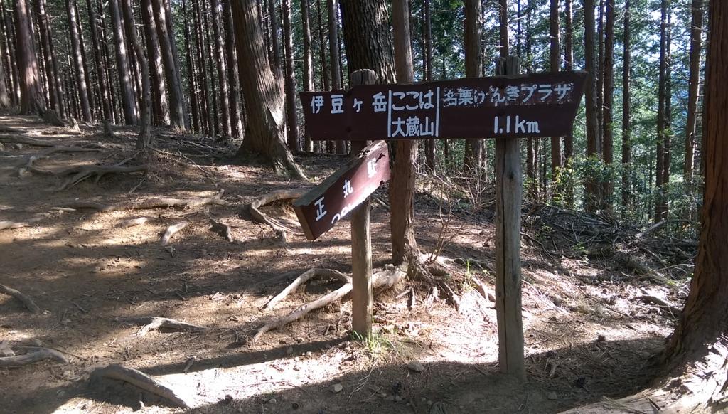 f:id:arimurasaji:20170505235316j:plain
