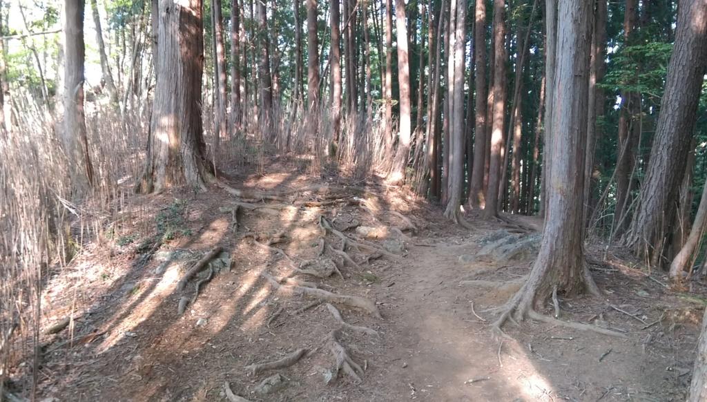 f:id:arimurasaji:20170506095801j:plain