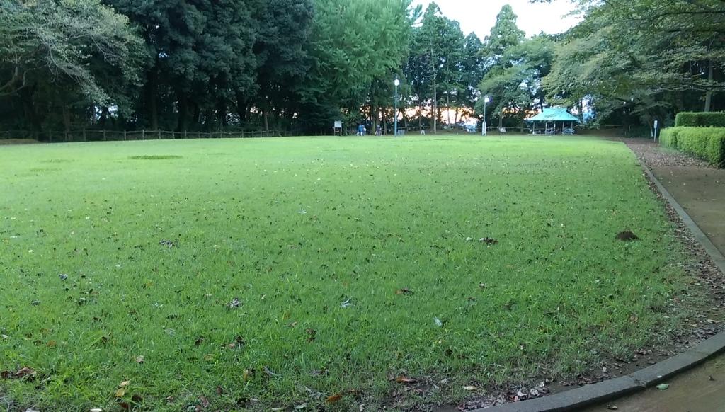 城山公園-広場
