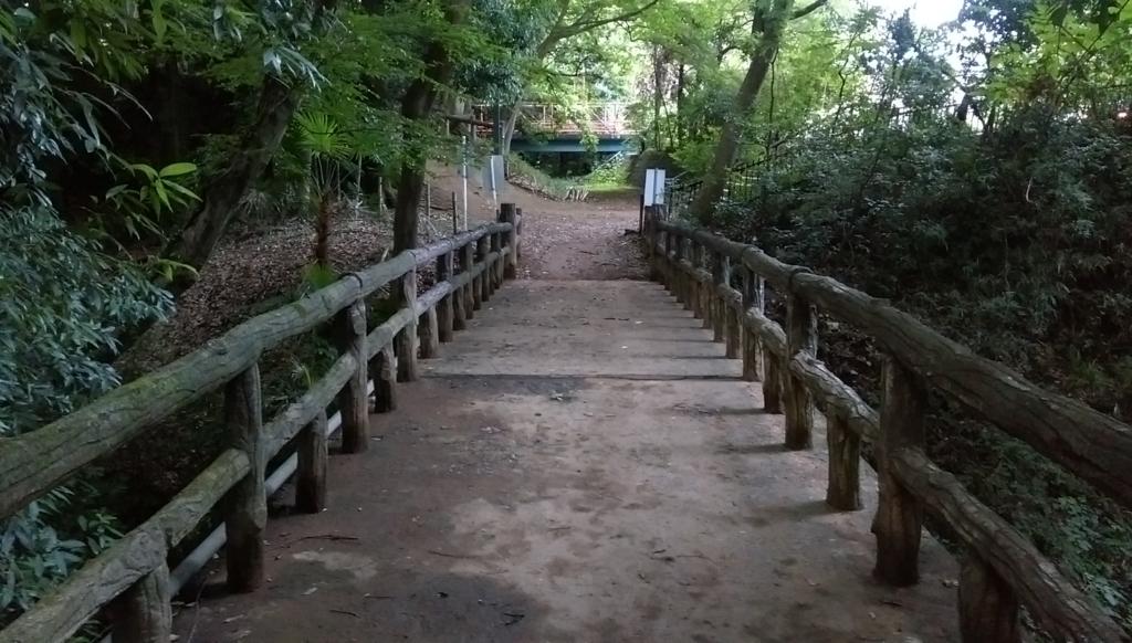 城山公園-普通の橋