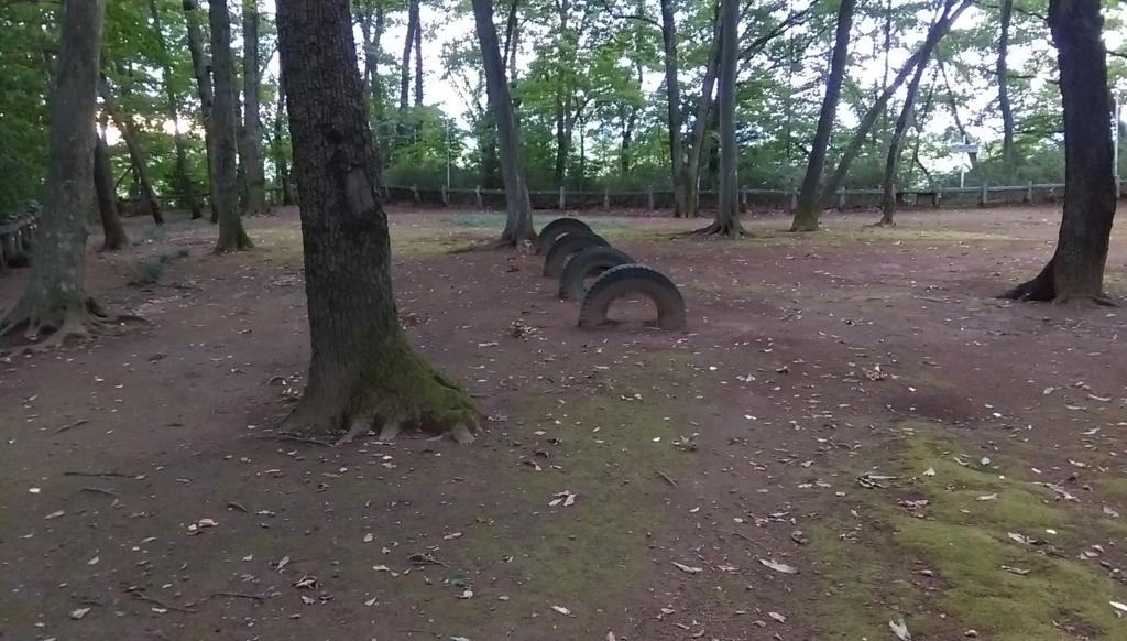 城山公園-タイヤ
