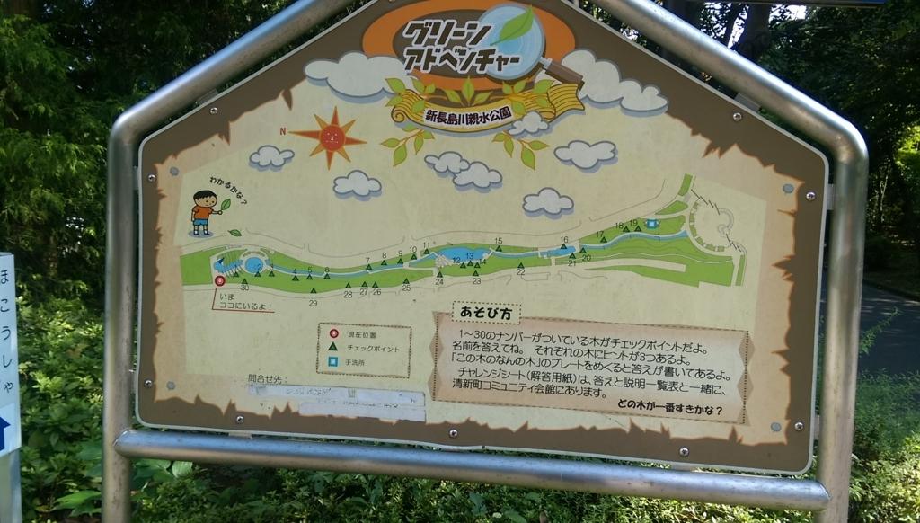 新長島川親水公園-この木なんの木?
