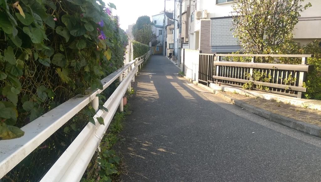 f:id:arimurasaji:20171112180320j:plain