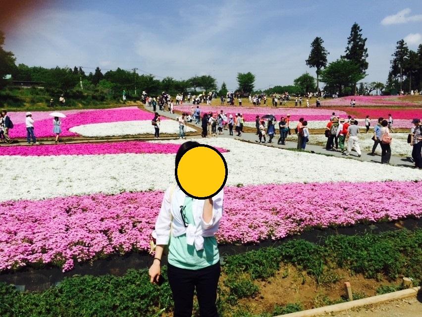 f:id:aringo_travel:20190202132023j:plain