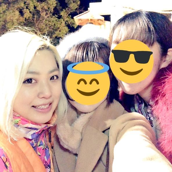 f:id:arinotsubasa:20170101072647j:plain