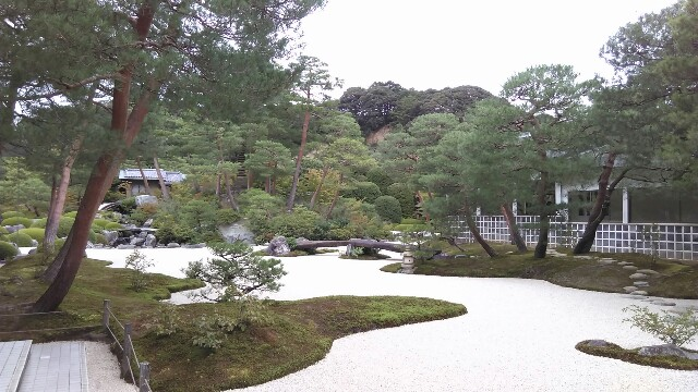f:id:arisawa_nanase:20161015234417j:image