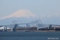 SSコロンビア号デッキから望む富士山